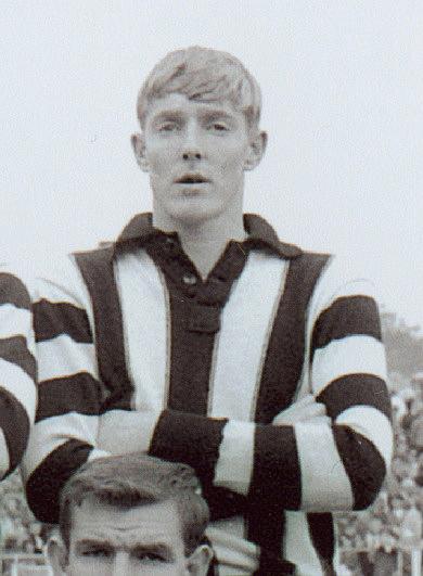 1943 VFA season