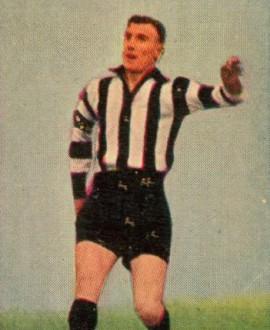 Lou Riley